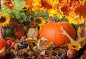 Осенние фестивали в Закарпатье