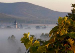 екскурсія в Угорщину